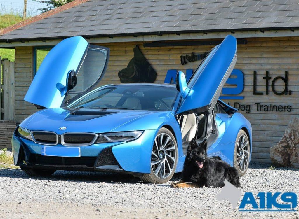 Blue BMW A1k9