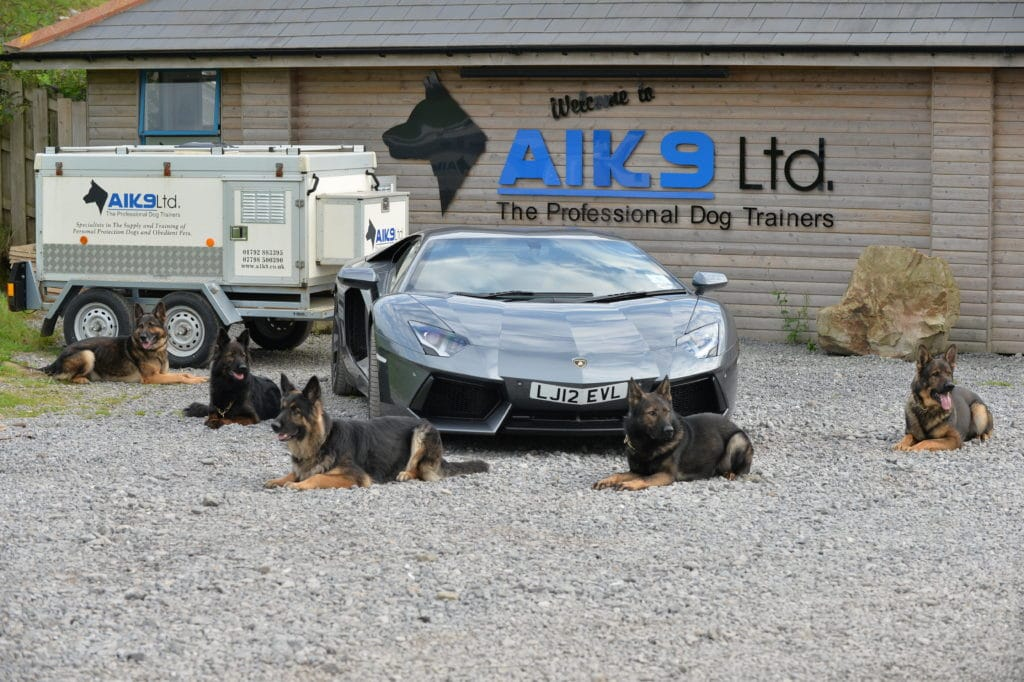 A1K9 dog trainers